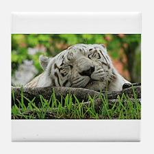 Sleeping Beauty/Bengal White Tiger Tile Coaster