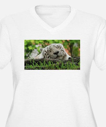 Sleeping Beauty/Bengal White Tiger Plus Size T-Shi
