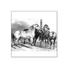 Antique drawing of Three Horses Sticker