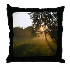Sunrise Shadows Throw Pillow