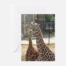 giraffe6 Greeting Cards (Pk of 10)