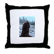 Hercules&Stella Throw Pillow