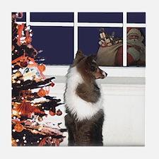 (1) I see Santa! Coaster