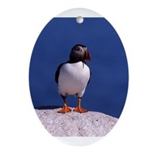 Puffin on a ledge Ornament (Oval)