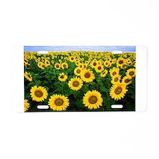 Sunny Daze Aluminum License Plate