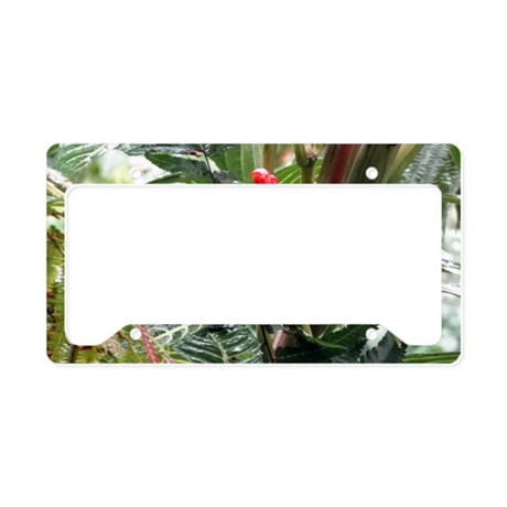Tropical Flower License Plate Holder