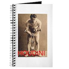 Houdini design Journal