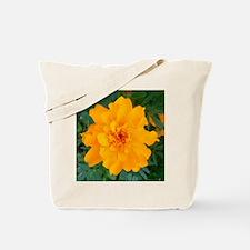Bursting Orange Marigold Tote Bag