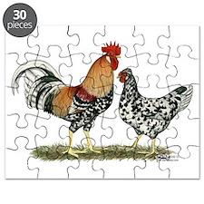 Icelandic Chickens Puzzle