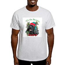 Brindle 'Tis Ash Grey T-Shirt