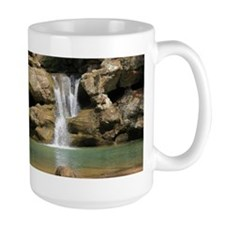 Beautiful Waterfall Mug