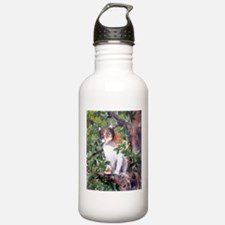 Calico Water Bottle