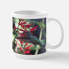 hummimg bird.jpg Mug
