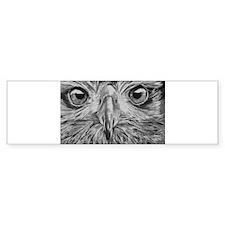Eagle Eyes Bumper Sticker