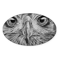 Eagle Eyes Decal