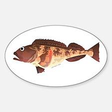 Lingcod fish Decal