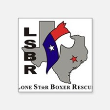 LSBR Rectangle Sticker
