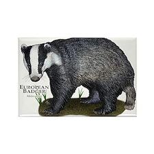 European Badger Rectangle Magnet