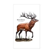 Red Deer Decal
