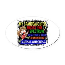 Rocks Spectrum Autism Oval Car Magnet