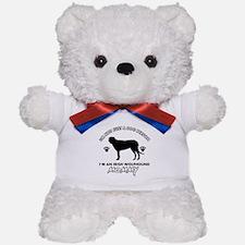 Irish Wolfhound dog breed design Teddy Bear