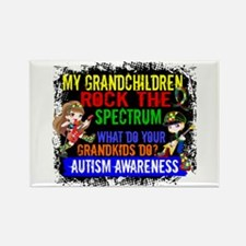 Rock Spectrum Autism Rectangle Magnet