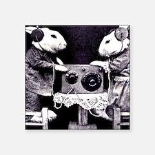 Bunny Radio Sticker