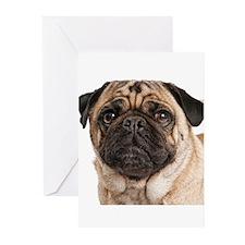 Pug Close-Up Greeting Cards (Pk of 10)