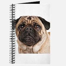 Pug Close-Up Journal