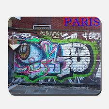Wall spray painting art in Paris (Seine) 12 Mousep