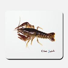 crayfish 1 sig Mousepad