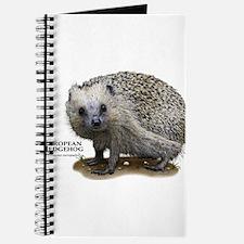 European Hedgehog Journal