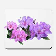 Purple azalea flowers Mousepad
