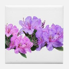 Purple azalea flowers Tile Coaster