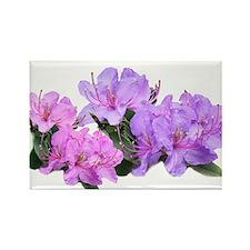 Purple azalea flowers Rectangle Magnet