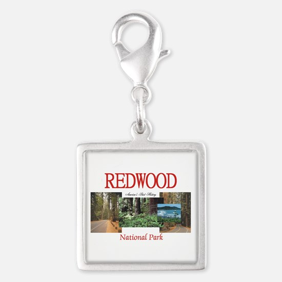 Redwood Americasbesthistory.c Silver Square Charm