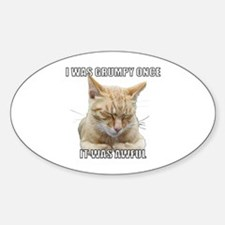 Zen Cat - I Was Grumpy Once It Was Awful Decal