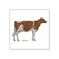 """Guernsey Milk Cow Square Sticker 3"""" x 3"""""""