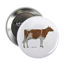 "Guernsey Milk Cow 2.25"" Button"
