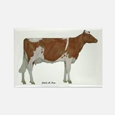 Guernsey Milk Cow Rectangle Magnet