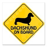 Dachshund on board Square Car Magnets
