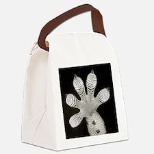 Tokay Gecko Canvas Lunch Bag