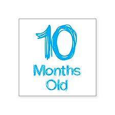 10 Months Old Baby Milestones Sticker