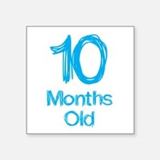10 Months Old Baby Milestones Sticker