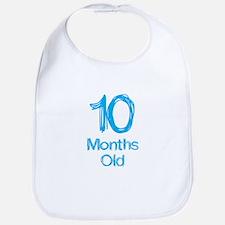 10 Months Old Baby Milestones Bib
