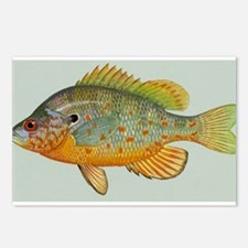 One Large Fish Postcards (Package of 8)