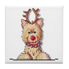 Pkt Christmas Cairn Tile Coaster