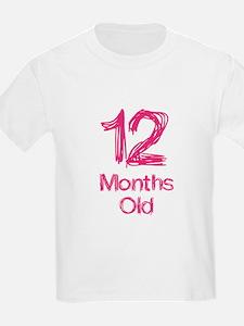 12 Month Old Baby Milestones T-Shirt
