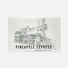 Pineapple Express Rectangle Magnet