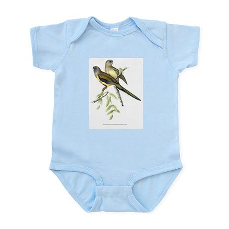 Antique 1875 John Gould Parakeets Bird Print Body